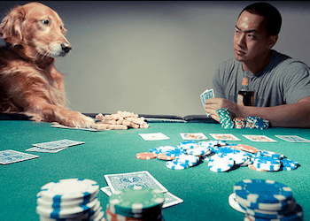 Accidental Landlord Will Accidental Landlords Hold 'em or Fold 'em?