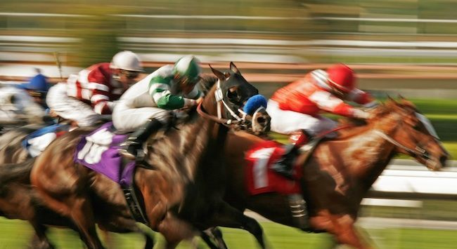 How Horse Racing Made me a Better Real Estate Investor