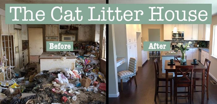 The Cat Litter House