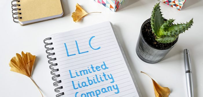 LLC written in blue marker on a spiral notebook laying on desk with small potted plant and other desk decor