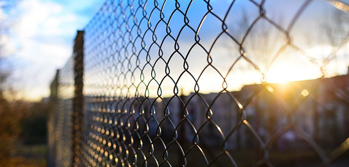 fence with metal grid in background