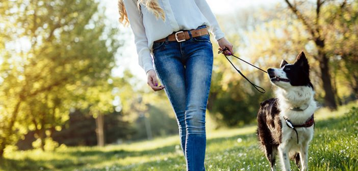 Beautiful woman and dog enjoying their time outdoors in nature