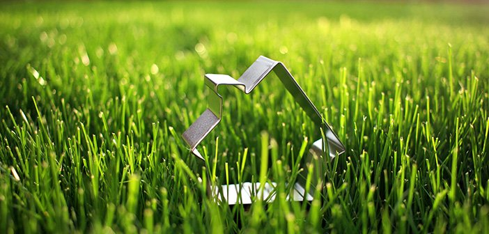 metal cookie cutter in the shape of a house placed in grass